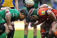 London Irish v Leicester Tigers