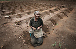 GALUFU, MALAWI NOVEMBER 10: Stelia Kunje, age 82, sits in her maize field with a few grains that she has left to plant on November 10, 2005 in Galufu, Malawi. Stelia doesn't have enough seeds to plant the whole field. The harvest was very bad in 2005 and the next one, due in April 2006, is uncertain because of lack of rains and drought. The village has seen an increase in poverty the last few years due to drought and HIV/Aids. Southern Africa has been hit by a severe hunger crisis due to drought and poverty. An ever-increasing HIV/Aids rate adds to the misery. Malawi is one of the worst hit areas and Galufu village is a typical small village that has become victim of this poverty spiral. (Photo by Per-Anders Pettersson)