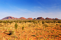 The Olgas, Northern Territory , Australia