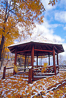 Maple leaves yellow with fall color surround the gazebo at Presque Isle Park in Marquette, Michigan after a light snowfall in autumn.