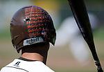 6-6-15, Pioneer High School vs Portage Northern, MHSAA Baseball Regional