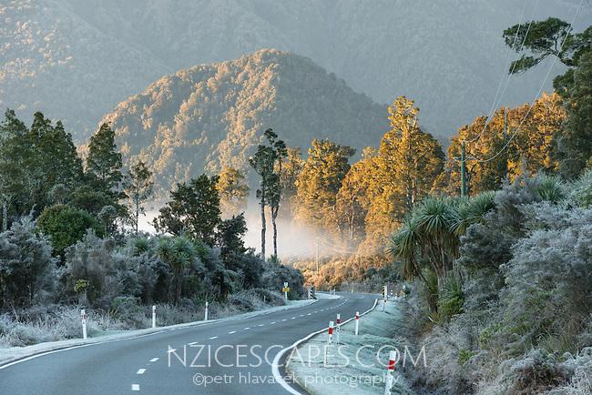 Winter morning, frosty scene with road through native forest near Lake Wahapo and Whataroa, Westland Tai Poutini National Park, UNESCO World Heritage Area, West Coast, South Westland, New Zealand, NZ