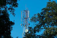 Flocks gather around Kololo cell tower