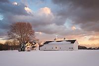 Horse Farm<br /> Mattituck, Long Island