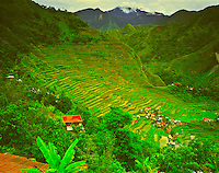 Ancient Rice Terraces at Batad, Banaue World Heritage Site, Ifugao, Philippines