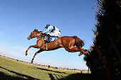 Wily Fox ridden by Matt Crawley in action during the Domenico Adorno 85th Birthday Novices' Handicap Hurdle - Horse Racing at Huntingdon Racecourse, Cambridgeshire - 23/02/12- MANDATORY CREDIT: Gavin Ellis/TGSPHOTO - Self billing applies where appropriate - 0845 094 6026 - contact@tgsphoto.co.uk - NO UNPAID USE.