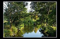 Afon Alun
