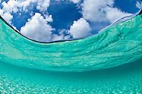 Split level image<br /> Trunk Bay<br /> Virgin Islands National Park<br /> St. John, U.S. Virgin Islands