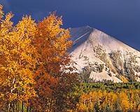 Snow At Warner Lake, Manti-La Sal National Forest, Utah, Haystack Mountain, Aspen trees, Populus tremuloides