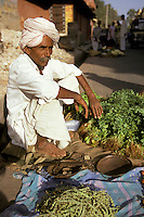India, Rajasthan, Jaipur, street vendor