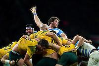 Argentina v Australia