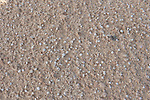Close up of sand on Corralejo Dunes National Park (Parque Natural de las Dunas de Corralejo), Fuerteventura, Canary Islands, Spain