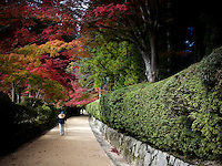 A man walks through the Imperial Palace East Gardens, Tokyo, Japan