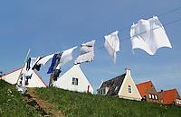 Typisch Hollands