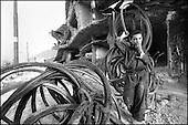 Kabul, August - September 2002 Afghanistan<br /> After 23 years of constant war Afghanistan tries to stand on its feet. There is a feeling of relative peace in the country. Life slowly returns to normal for the civilian population.<br /> ( &copy; Filip Cwik / Napo Images dla Newsweek Polska )<br /> <br /> Kabul sierpien - wrzesien 2002 Afganistan.<br /> Po 23 latach nieustajacych wojen Afganistan probuje stanac na nogi. W kraju panuje wzgledny pokoj. Ludnosc cywilna powoli wraca do normalnego zycia <br /> ( &copy; Filip Cwik / Napo Images dla Newsweek Polska )