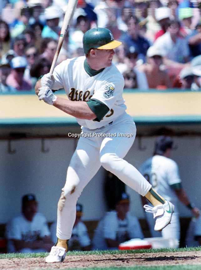 Oakland A's slugger Mark McGuire (photo by Ron Riesterer)