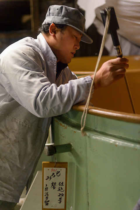 """A brewery worker checking the progress of fermenting sake. Tsuji Honten Sake, Katsuyama town, Okayama Prefecture, Japan, February 1, 2014. Tsuji Honten was founded in 1804 and has been at the cultural centre of the town of Katsuyama for over two centuries. 34-year-old Tsuji Soichiro is the 7th generation brewery owner. His elder sister, Tsuji Maiko, is the """"toji"""" master brewer."""
