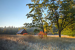 Washington, Northeast, Stevens County, Colville, Little Pend Oreille Wildlife refuge. Barn in autumn and morning light.