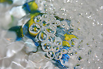 Abstract bubbles with blue and yellow for background or design