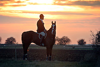 Cambridgeshire, England, 05/11/2003..The Fitzwilliam Hunt on their first meet of what may be the last legal hunting season in the UK, as Parliament moves to ban hunting with dogs. A deer runs across the front of the hunt at twilight.