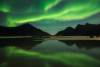 Northern lights reflection on Skagsanden beach, Flakstadøy, Lofoten Islands, Norway
