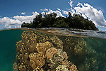 Shallow corals split level with the island