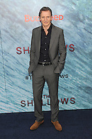 """NEW YORK, NY - June 21: Liam Neeson attends the NEw York premiere for """"The Shallow"""" at the Loews AMC on June 21, 2016   in New York City .  Photo Credit: John Palmer/ MediaPunch"""
