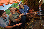 Dr. Matthew Tocheri and Thomas Sutikna ask those sieving sediments from Liang Bua cave to be on the lookout for wrist bones. While the tiny bones appear insignificant, Tocheri's work shows that they are crucial in differentiating apes and ancient humans from modern huamsn and Neanderthals. Wrist bones discovered to date align the Flores hobbit with the more ancestral forms.