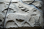 Picture & image of a Neo-Hittite orthostat showing a Deer from Alacahöyük, Alaca Çorum Province, Turkey. Ancora Archaeological Museum.  Old Bronze age Chalcolithic Period.