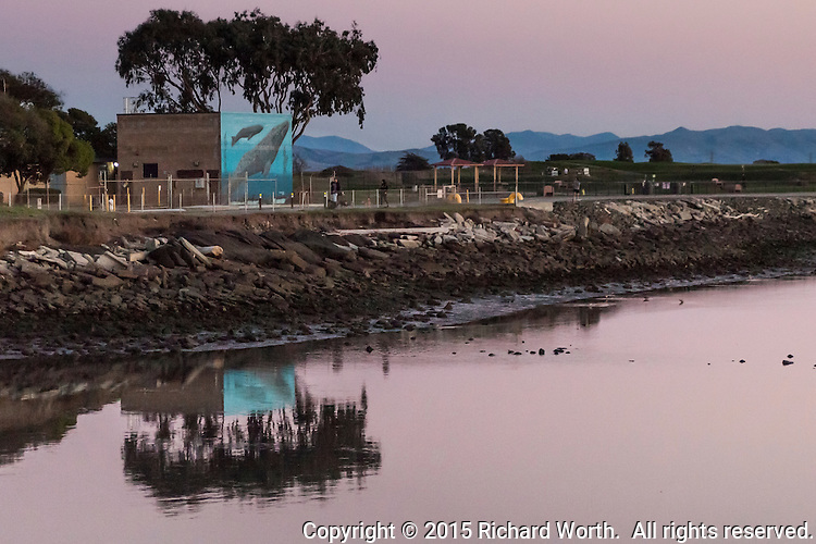 The mural on a water treatment building along the San Francisco Bay Trail is reflected in the bay's water in the pale pink light following sunset.