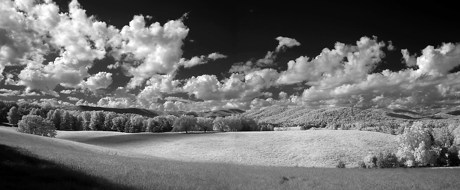 An panoramic infrared view of a pasture off Barracks Road in Albemarle County, VA. Photo/Andrew Shurtleff
