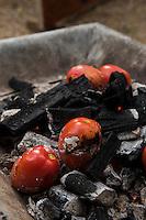 Tomatoes for the salsa. Jardin Cebu at Guillermo Olguin´s studio. Oaxaca, Oaxaca