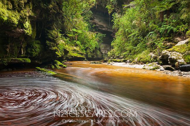Orange, brown stained Oparara River in lush green rainforest near limestone arch, Kahurangi NP, West Coast, New Zealand
