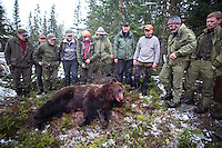 Bear hunting in Mid-Norway. Selbu.