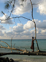 Cayman Island Visuals