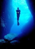 Marine Life - Corals, Fish, Mammals, Scuba Diving & Wrecks, Underwater, Tauchen, Marine animals