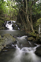 Scenic streams and waterfalls just below Kapena Falls near the Pali Highway,Oahu.