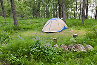 Tent at the Brooks Campground, surrounded by and electric fence for bear deterrent. Katmai National Park, southwest, Alaska.