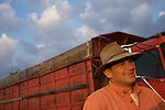 Charles Fry..Edamame harvest at the Fry Farm in Tiffin, Ohio.Charles C Fry.American Sweet Bean Company