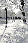 Sentinel/Dan Irving.The sun shines through trees to the freshly fallen snow in Centennial Park on Saturday morning..(1/21/06)