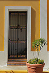 USA, Puerto Rico, San Juan. Plant and Doorway of Old San Juan, Puerto Rico.