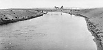 Jerome ID:  Horse-drawn carriage traveling over the irrigation canal - 1909.   Brady Stewart and three friends went to Idaho on a lark from 1909 thru early 1912. As part of the Mondell Homestead Act, they received a land grant of 160 acres north of the Snake River.  For 2 ½  years, Brady Stewart photographed the adventures of farming along with the spectacular landscapes.