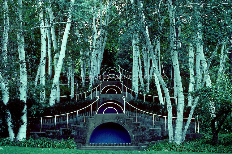 """Blue Steps"" at Naumkeag, MA. Fletcher Steele's famous design within white Birches. Form and structure design of a garden"