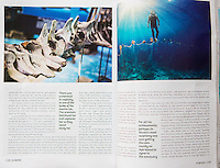 An article in GRID magazine about Apo Island, it's marine protected area and the scientists and locals behind it all.