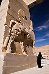 Tourist in Persepolis, Iran