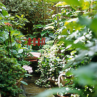 A rustic red garden chair with a cushion is tucked amongst the bushes of this overgrown garden
