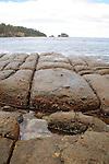 Tesselated Pavement, Tasman Peninsula, Tasmania