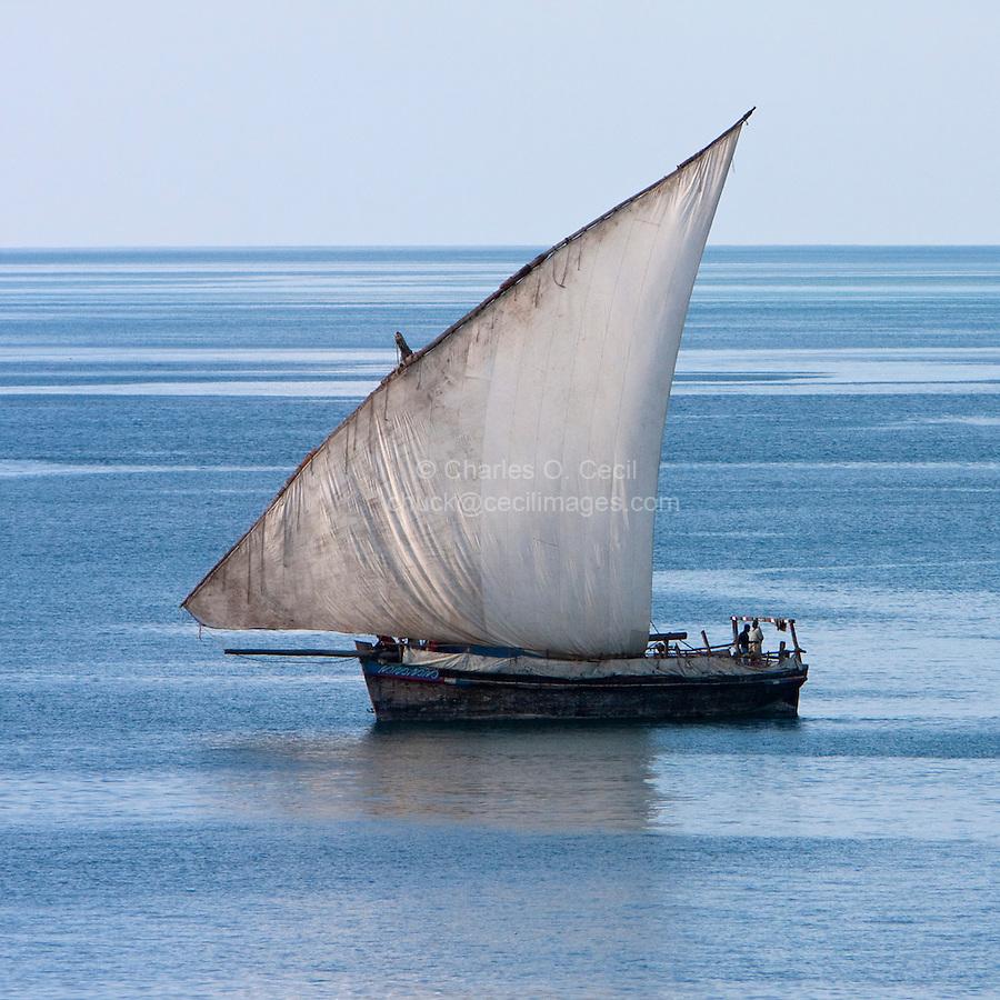 Zanzibar, Tanzania.  Lateen Sail on Dhow in Harbor.