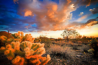 McDowell Mountain Desertscape - Arizona (color) - Scottsdale - Dramatic clouds