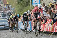 John Degenkolb (DEU/Trek-Segafredo) on the final climb of the Paterberg<br /> <br /> 101th Ronde Van Vlaanderen 2017 (1.UWT)<br /> 1day race: Antwerp &rsaquo; Oudenaarde - BEL (260km)
